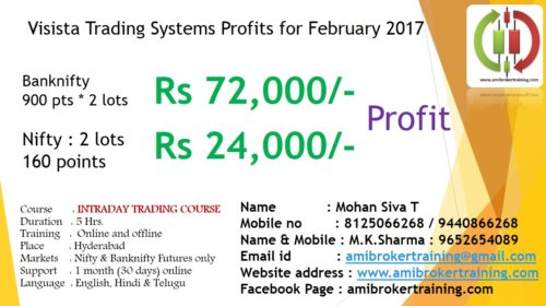Visista February 2017 Nifty and Banknifty performance